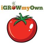iGrowMyOwn: Tomato