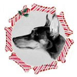 Doberman Christmas