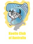 Koolie in Tunnel with yellow Koolie Club of Austra
