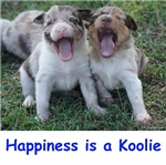 Happiness is a Koolie