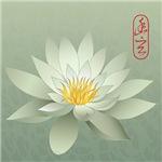 Pale White Lotus