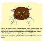 The Cat's Diary