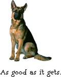 Good German Shepherd
