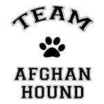 Team Afghan Hound