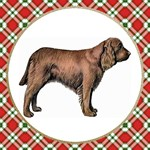 Sussex Spaniel Gifts