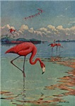 Flamingo Art