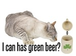 I Can Has Green Beer? Lolcat