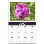 ...Wild Flower 08...