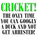Humorous Cricket T-Shirts and Gifts!