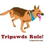 Tripawds Rule (Codie Rae)