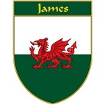 James Welsh Flag Shield