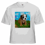 Puppy Dream Meadow