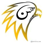 Shaheen 1 (Falcon in Persian)
