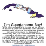 Guantanamo Bay (SQ)
