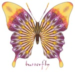 Quills Butterfly