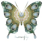 Ascension Green Butterfly