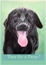 Lab & Dog Birthday Cards - singles
