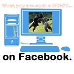 Beast on Facebook?