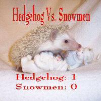 Hedgehog vs. Snowmen