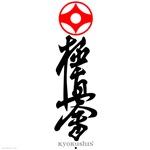 Kyoku Shin Kai teeshirts