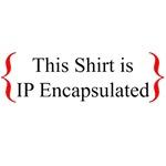 Get IP Encapsulated