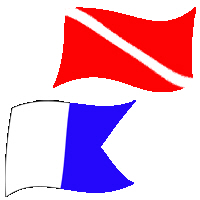Dive Flag Designs