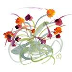 Atom Flowers #24