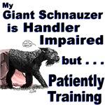 Giant Schnauzer Agility