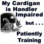 Cardigan Agility