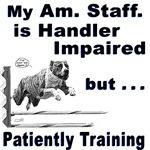 Am. Staffordshire Terrier Agility