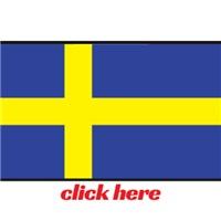 Swedish Automobiles