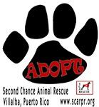 SCARPR Adopt Paw