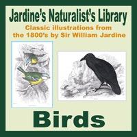 Jardine's Birds