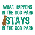 Stays In The Dog Park