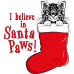 Santa Paws Kitty