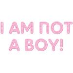 I Am Not A Boy 2