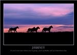 Journey Horses at Sunset