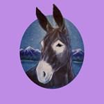 Donkey - Jack Ass