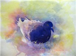 Easter Egg Pigeon