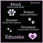 Adopt or Educate