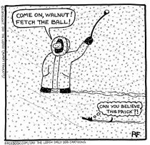 Snow Storm Prick