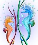 Seahorses Cartoon