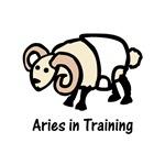 Aries in Training