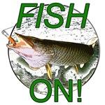 Musky fish on!