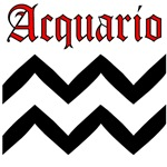 Acquario (Aquarius)