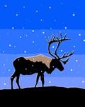 Wild Animal Graphics Christmas Cards