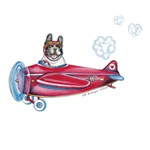 Valentine Airplane (Pied)
