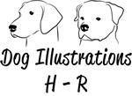 H-R Dog Illustrations