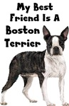 My Best Friend Is A Boston Terrier