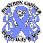 Destroy Stomach Cancer Shirts and Gear